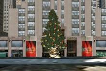 Sapins de Noël en 3D