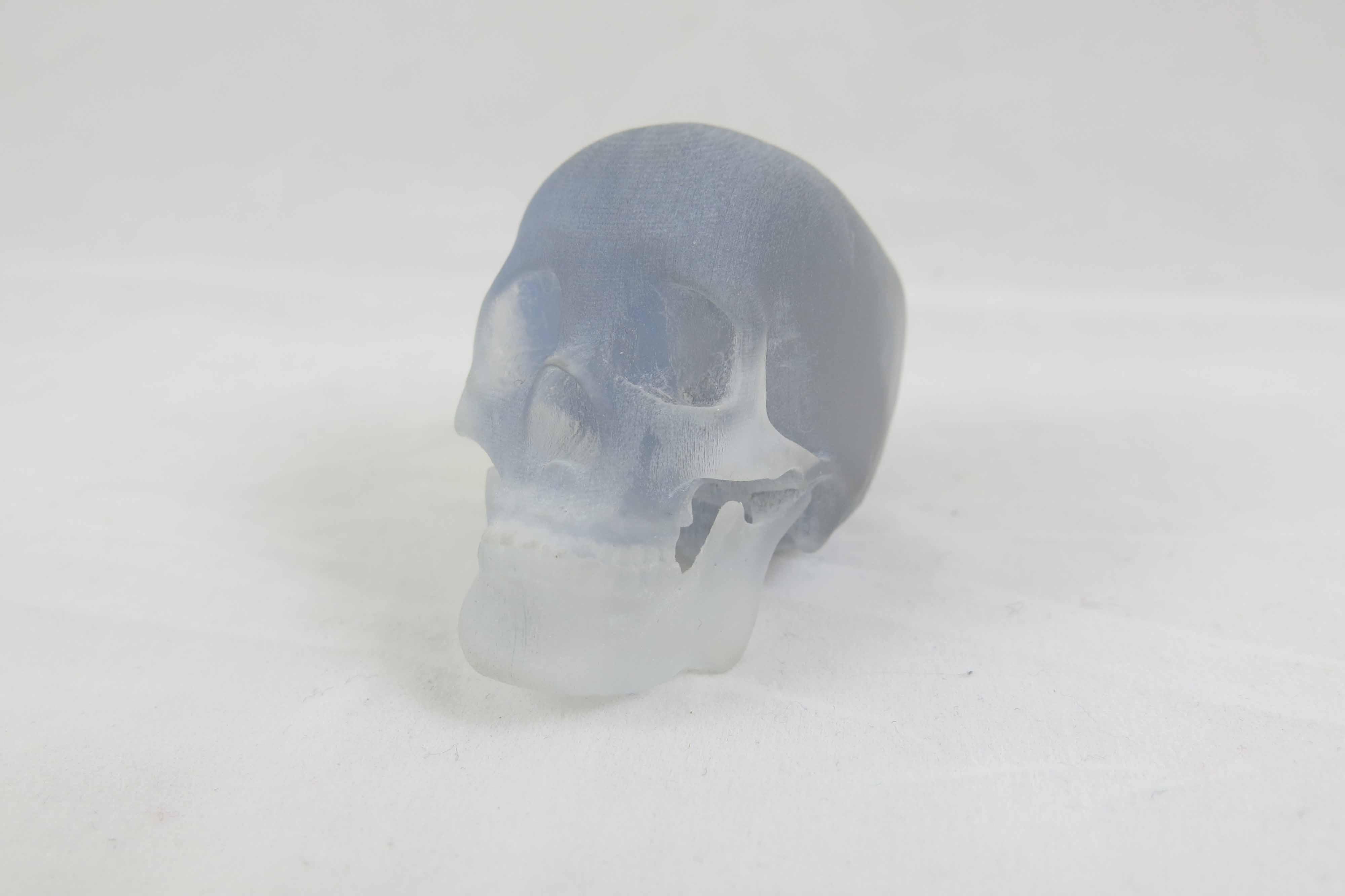 Skull Resin 3D print