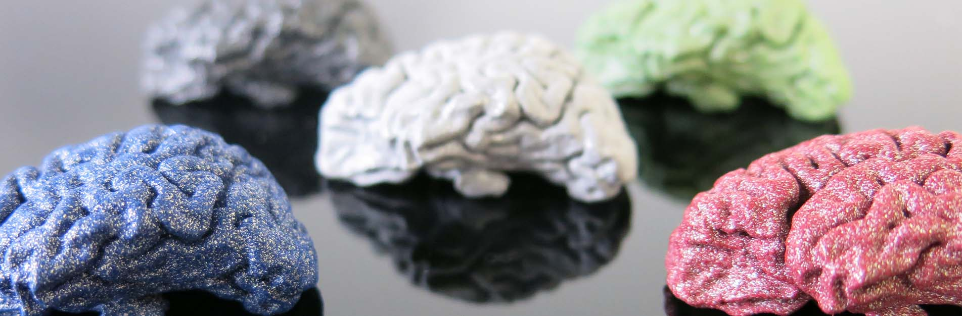 3D printed brain in polished and colored alumide blog background 1903x426px