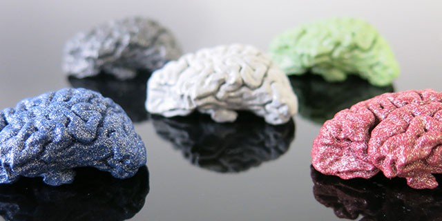 brain_alumide_polished and colored640x320px