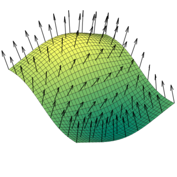A vector field of normals on a surface