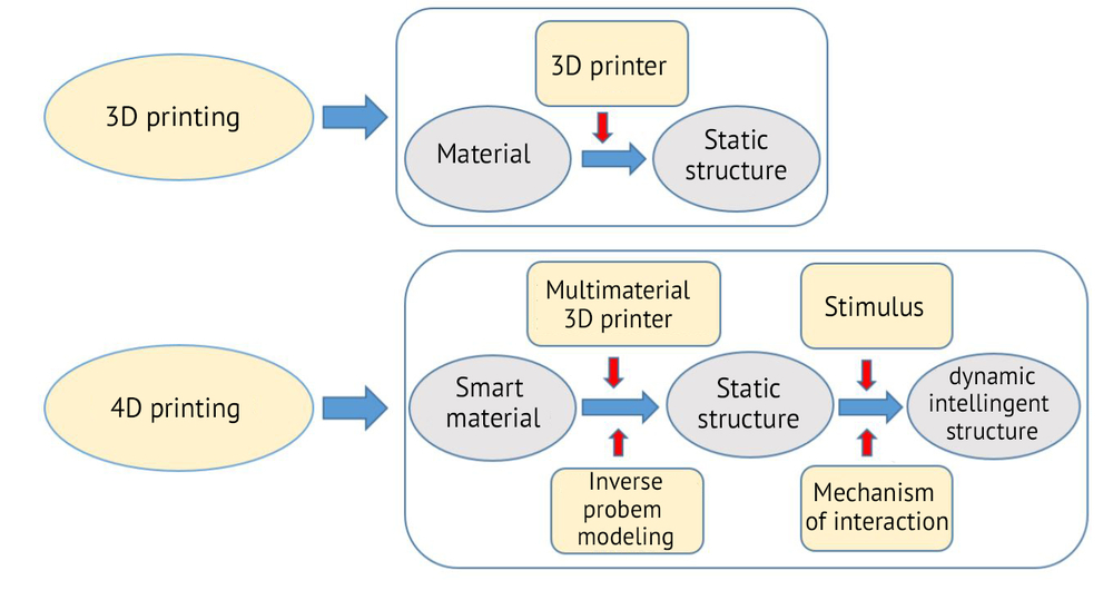 differences between 3D Pringing and 4D printing