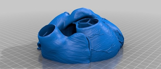 The best 3D modeling software for the medical industry!