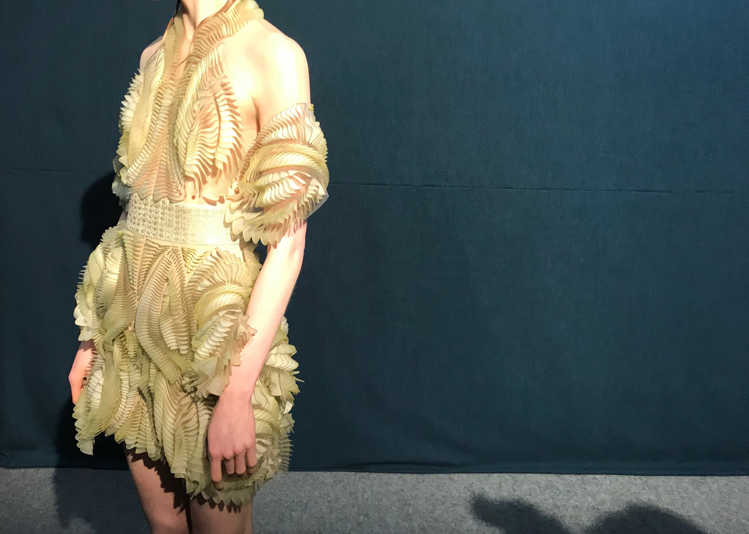 3D printed dress by Iris Van Herpen at Paris Fashion Week