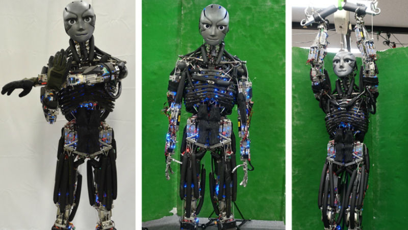 credit: https://gizmodo.com/japanese-scientists-made-a-sweating-robot-that-can-fina-1821584469