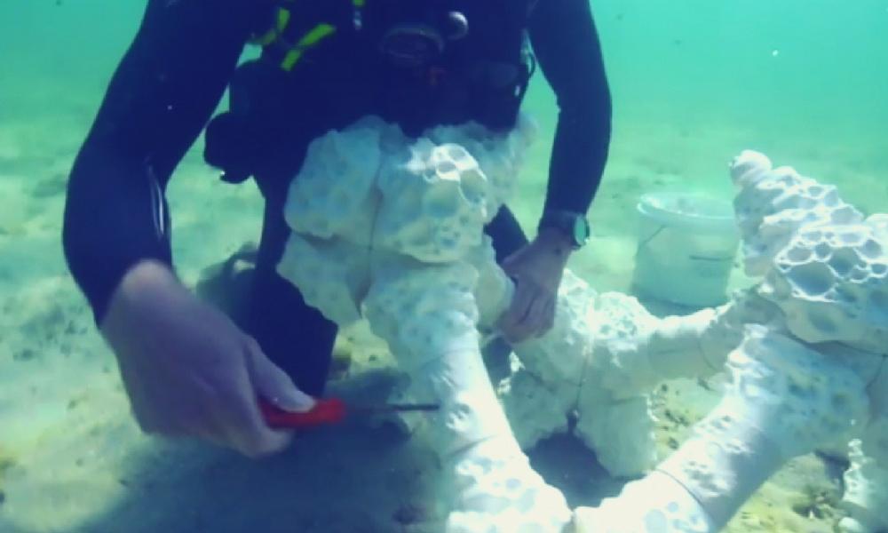 Concrete 3D printed coral reef