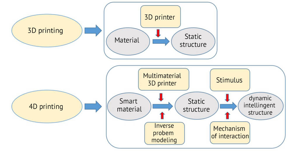 Differences between 3D printing and 4D printing procedures. Diagram by Jean-Claude André | Scientific Advisor at INSIS
