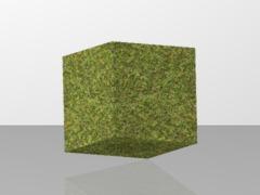 MyCraft Grass