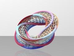 Umbilic_torus _cage_boundary