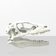 Dino Skully