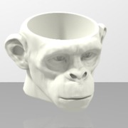 PM3D_coq chimp1.stl