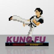 Kung fu nes 2