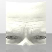 Mc-Queen-face-print-part
