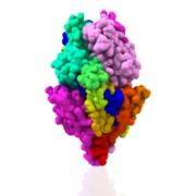 Fusion F Glycoprotein Prefusion 5tdl