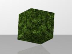 MyCraft Leaves Ferns