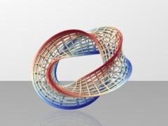 Umbilic_torus2nd_cage