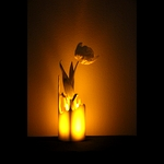 /media/picture/original/splash-vase_dark_carre_thumbnail_squared_small..jpg