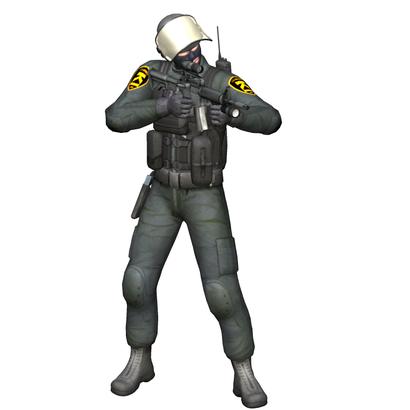 SWAT Longgun