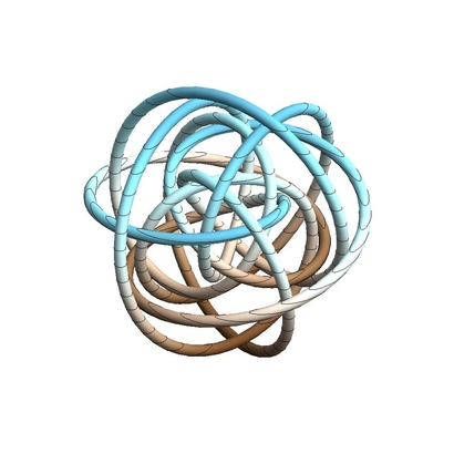 wow_knot