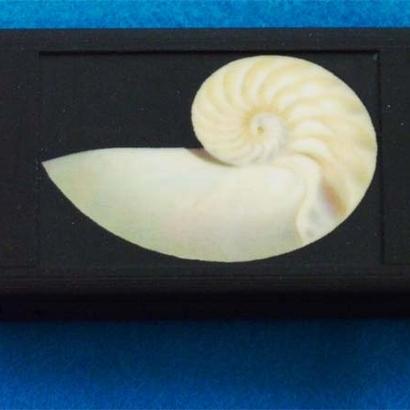 Nautilus Universal Charger Color 4400mah