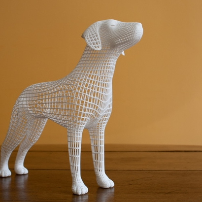 Wireframe dog