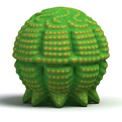 Xeno Hive