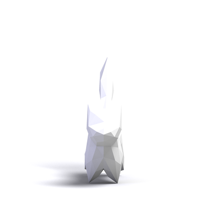 Gato_Salt
