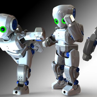 RoboSavvy Humanoid