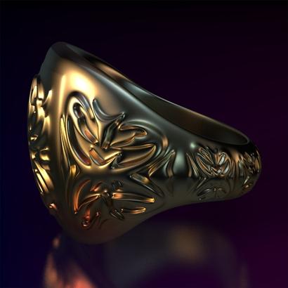 Ring_Osar15Ocarm14FR001