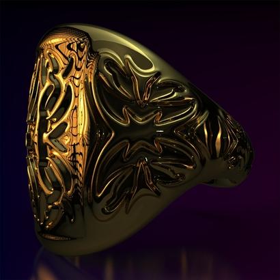 Ring_Osar15Ocrrm14FR001