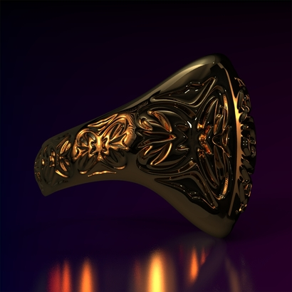 Ring_Osr15Ocam14FR001