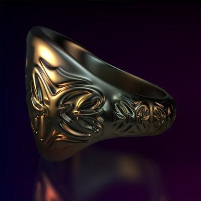 Ring_Osa15Ocrrm12FR001