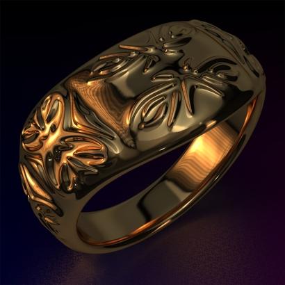 Ring_Osar15Ocam12FR002