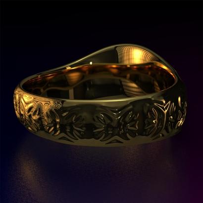 Ring_Osa15Ocam12FR002