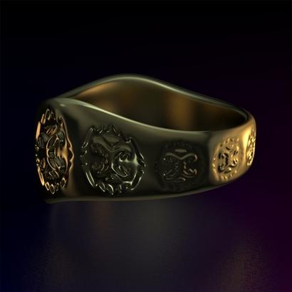 Ring_Osr17Ocrm15FR002