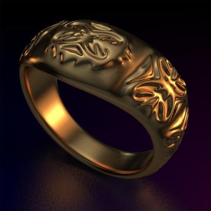 Ring_Osar15Ocam17FR002