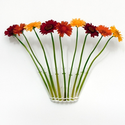 Test Tube Vase - Nine