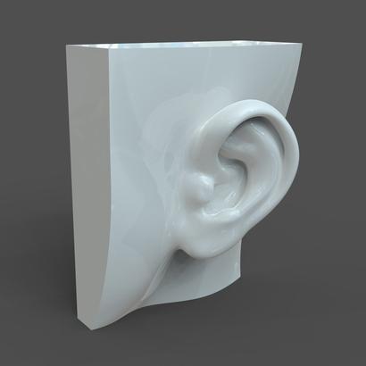 Female ear F1P1D0V1ear