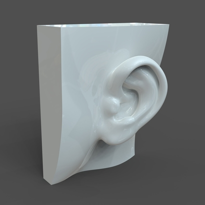 Female ear F1P1D0V1ear