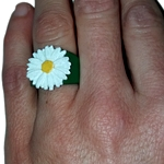 /media/picture/thumb/2019/03/06/srgM/ring-daisy-saliente-verde-mano_thumbnail_squared_small..jpg