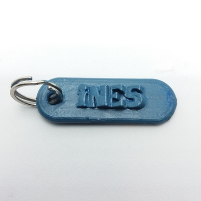 INES 3d keychain