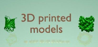picture_3Diversity